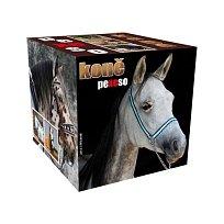 Pexeso boxnové Koně